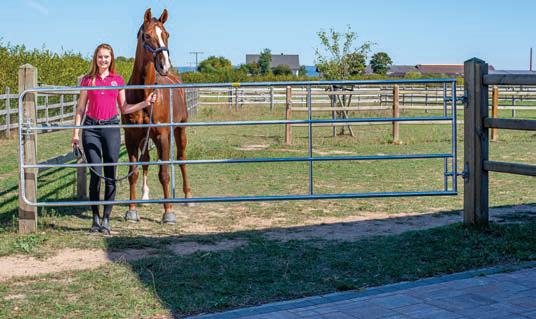 Verstellbares Weidezauntor für Pferde, Höhe 1.10 m