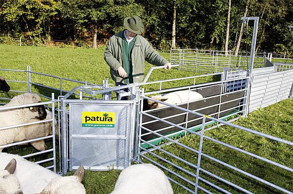 2-Wege-Stop-Sortiertor, für Schafbehandlungs und Sortieranlagen