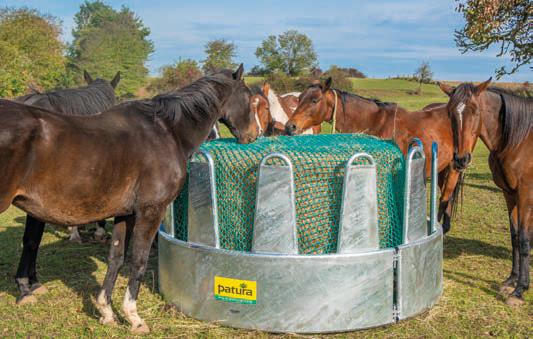 Rundraufe für Pferde